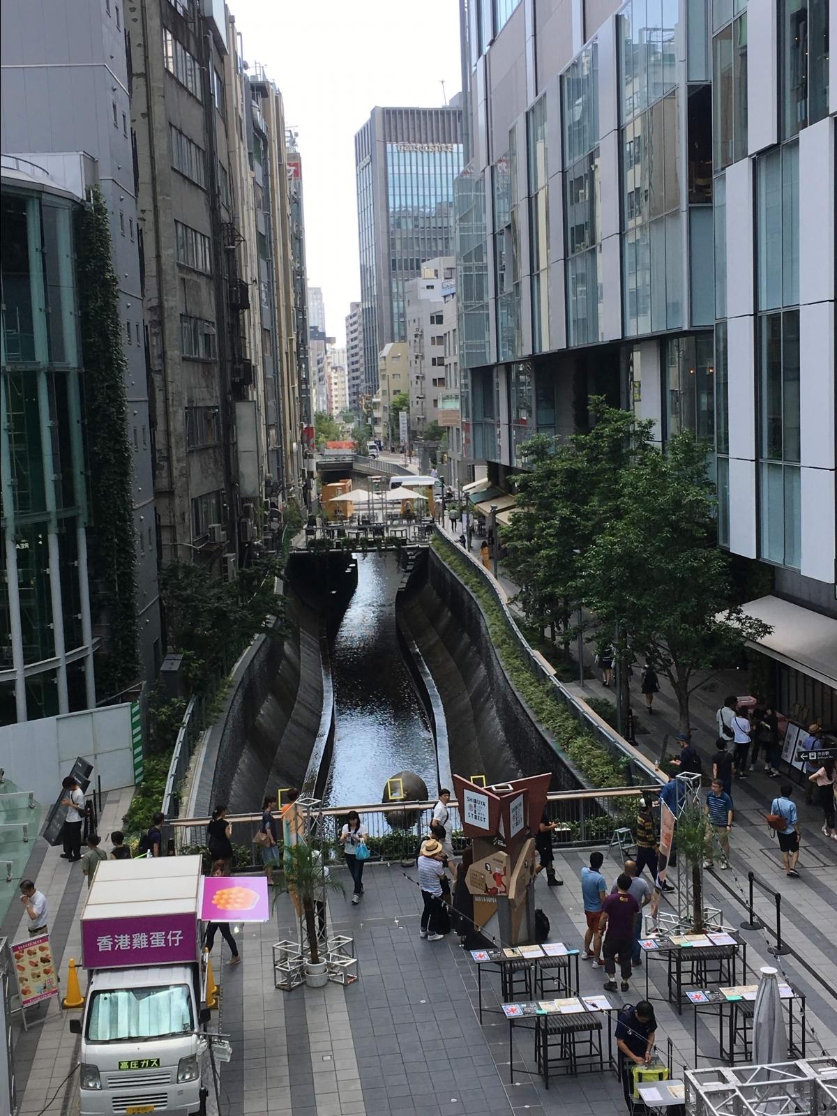 渋谷 カバ